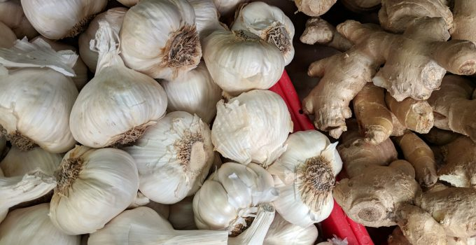 ginger garlic paste making business
