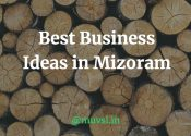 business ideas in mizoram