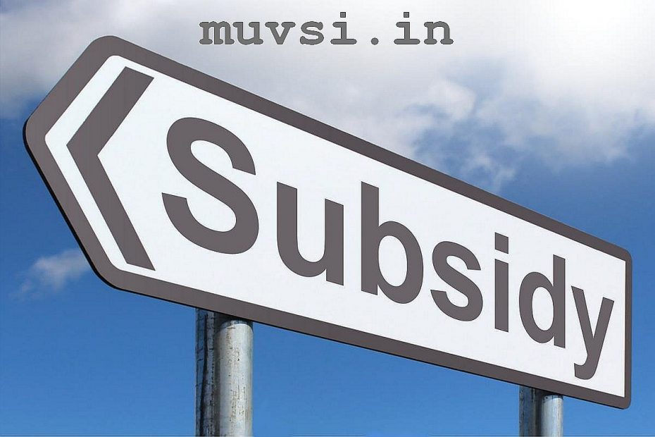 government subsidy scheme