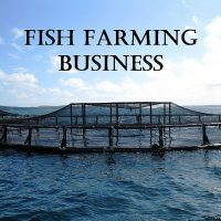 15 Profitable Fish Farming Business Ideas