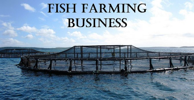 fish farming business ideas