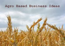 agro based business ideas