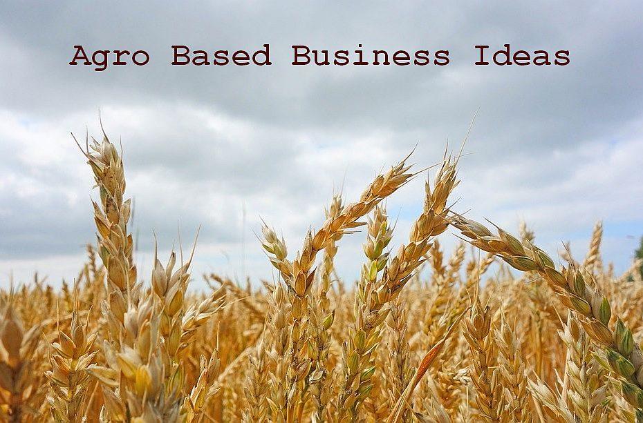agro based business ideas