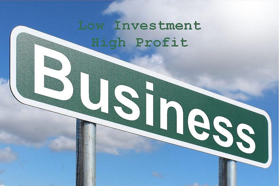 business ideas with low investment high profit