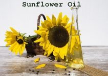 sunflower oil manufacturing business