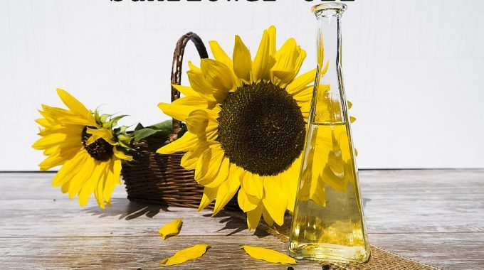How To Start Sunflower Oil Manufacturing Business