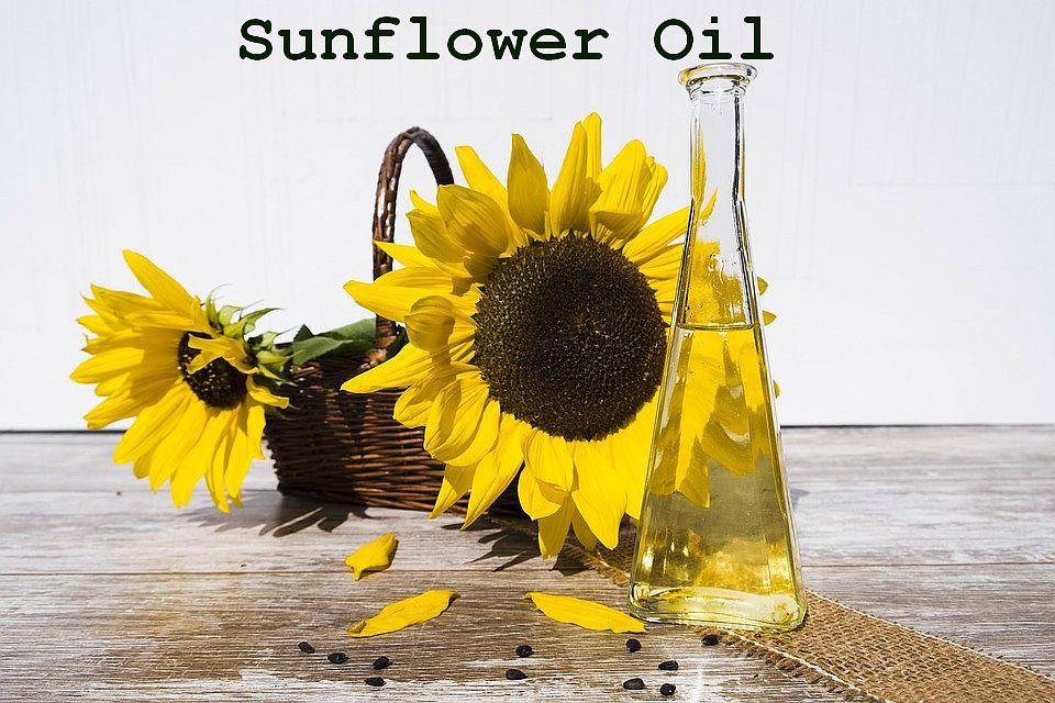 Sunflower Oil Manufacturing Business Plan Sample Checklist